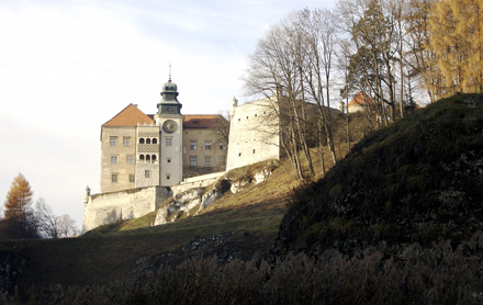 Castle in southern Poland, nov 2006